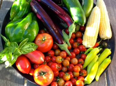 b2ap3_thumbnail_Home-grown--veggies-from-Griffins-Hill-garden-.jpg