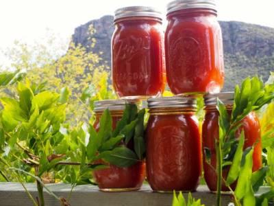 Tomato stock